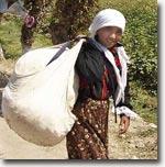 В Наманганской области Узбекистан начался сбор хлопка. Фото ИА Фергана.Ру