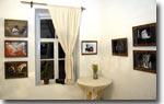 Выставка работ В.Жирнова
