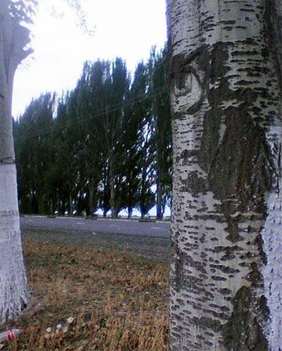 Полупокрашенные деревья