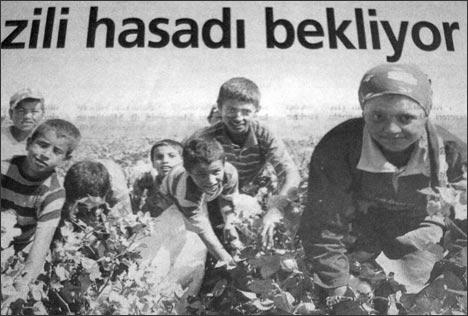 Дети с родителями на хлопковых полях. Фото из газеты Миллият