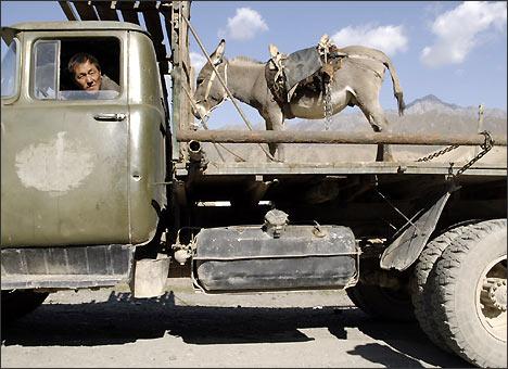Транспорт путешественника. Часть пути я проехал рядом с ослом. Фото ИА Фергана.Ру