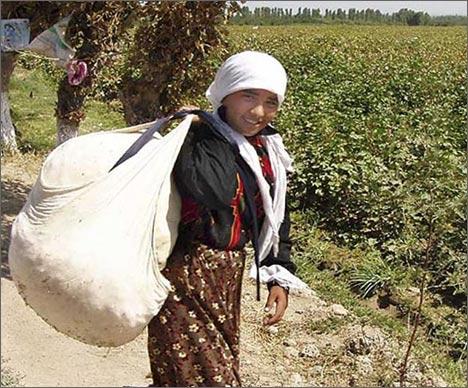 Узбекская девушка - сборщица хлопка