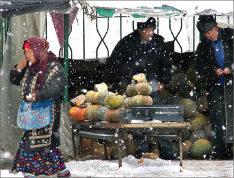 Ташкент, 14 февраля 2008 года. Фото ИА Фергана.Ру