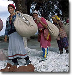 Uzbekistan Open for Dialogue over Child Labour in Cotton Fields – Officials