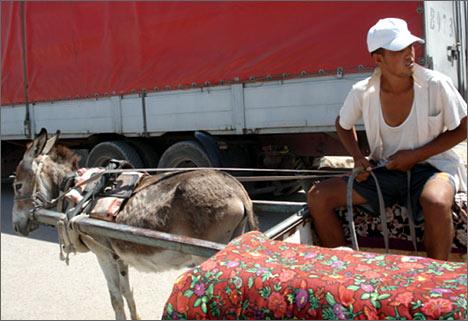 Гужевой транспорт – приграничная азиатская экзотика