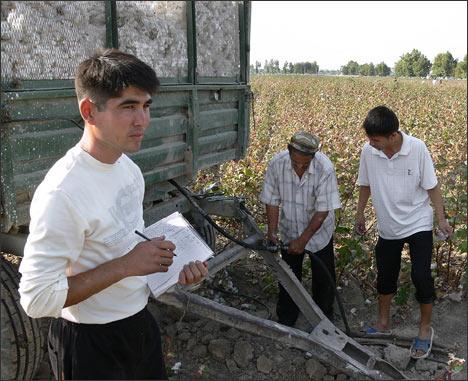 На хлопке. Ташкентская область. Фото ©Фергана.Ру