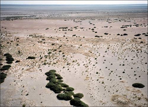 Дно Аральского моря. Aral sea. Осушка с самолета