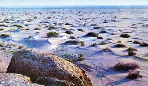 Солончаки на дне Аральского моря