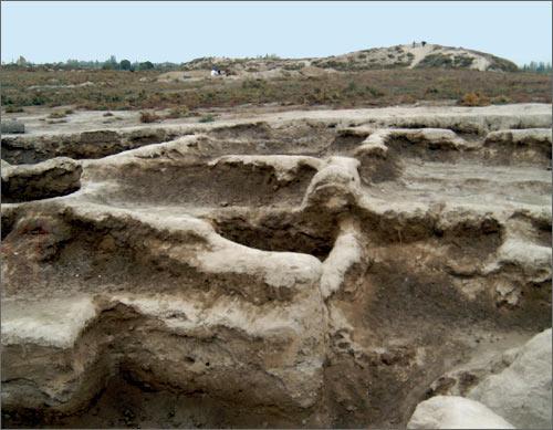 Поля и холмы Центральной Азии хранят пласты древнейшей культуры