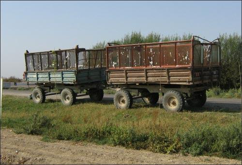 Закрома родины ждут урожая, собранного детскими руками