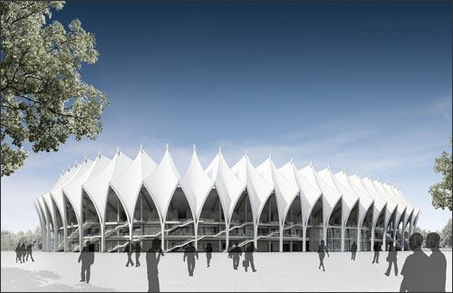Будущий стадион (проект)