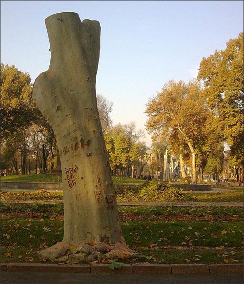 Уничтожение ташкентского сквера