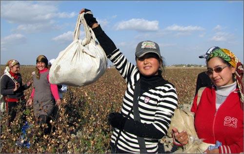 Узбекистан. Дети на хлопке