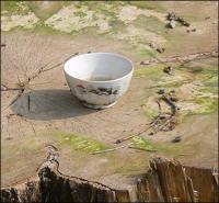 Ўзбекистон: Навбат қабристондаги чинор-қайрағочларга келди