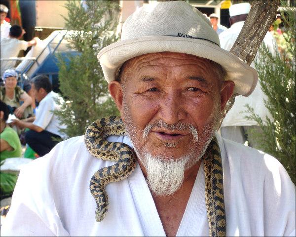 Змеи – основа узбекского целительства