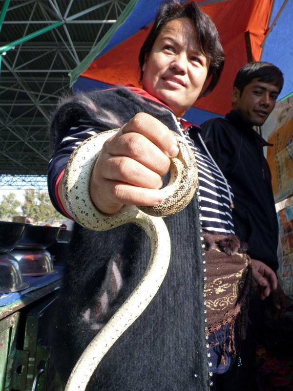 Змеи на ташкентском базаре