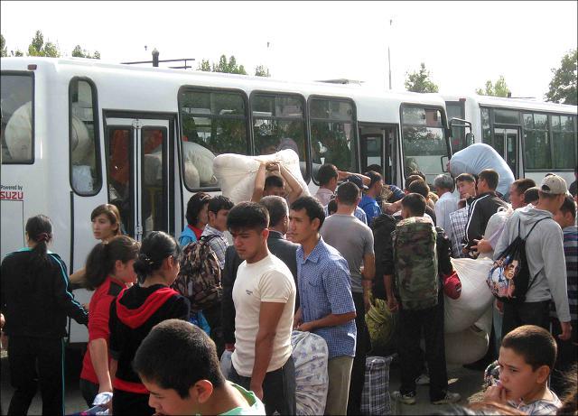 Узбекские студенты отправляются на сбор хлопка. Фото с веб-сайта Flickr.com/photos/ahrcaorg