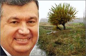 Ўзбекистон: Бош вазирнинг оғзаки буйруғи билан ерлар қайта тақсимланади