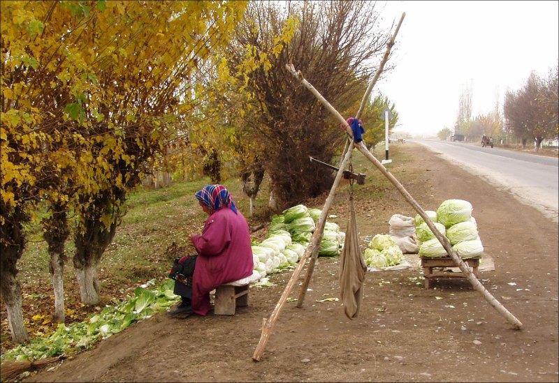 Проблемы фермеров в Узбекистане