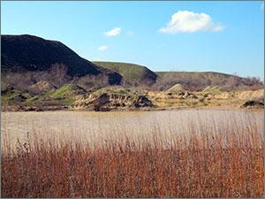 Гравий против рыбы. Как гибнут реки Южного Казахстана