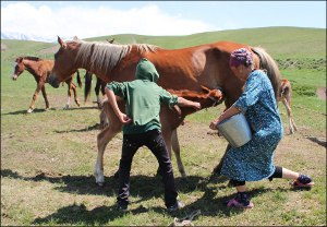 Кумыс Кыргызстана