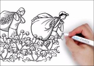 Пахта соҳасидаги қулдорлик: Cotton Campaign илк бор Туркманистонга босим ўтказишни бошлади
