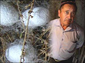 Узбекистан: Коконы и огород, или Если хочешь что-то получить - надо давать