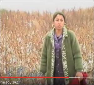 Ўзбекистонда ер рэкети: Гуллаб-яшнаётган хўжаликни барбод этиш ҳамда 50 тонна пахтани нобуд қилиш йўли