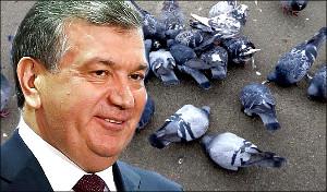Колонка Ядгора Норбутаева. «Идите  же  сюда, голуби мои!»