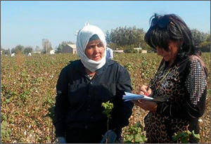 Uzbekistan: Everyone, yes, everyone is picking cotton. But two women taking photos