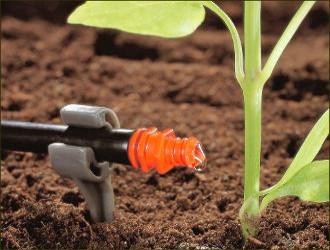 Таджикистан: Капельное орошение поможет сохранить гидроресурсы и спасти сельское хозяйство