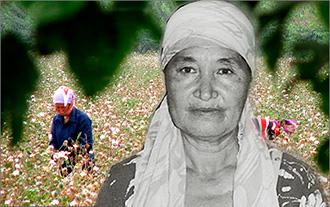 Воспоминания Сурата Икрамова: Как фермеры из Хорезма рискнули не дать взятку хокиму