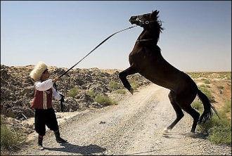 Туркменистанцы: Дым отечества нам сладок, но чужбина стала родной. Почему?