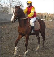 В Таджикистане есть все для успешного развития конного спорта. Но немало и препятствий