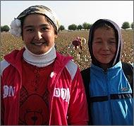Узбекистан: Так плохо, как в этом году, детям на хлопке еще не было никогда