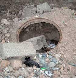 Таджикистан: В Худжанде плодятся колодцы-капканы