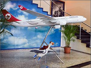 Авиакомпания Turkish Airlines – мировой лидер по доходам, маршрутам, качеству услуг