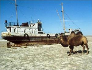 Водные ресурсы в Центральной Азии: зависимая независимость