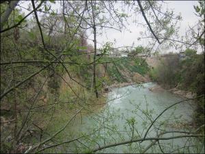 Ташкентский Бурджар: вонючие воды, замусоренные берега