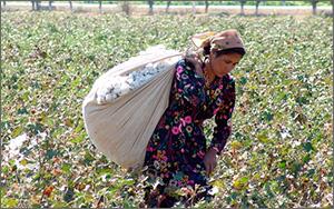 Узбекистан: «Нужно поднять нацию с колен!»