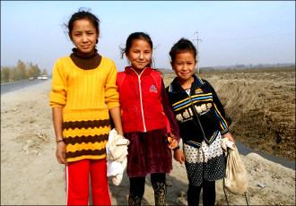 Поля безнадежности. Дети Узбекистана остаются заложниками битвы за урожай хлопка