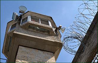 Сидит, освобожден, умер. Список политзаключенных Узбекистана сократился в пять раз