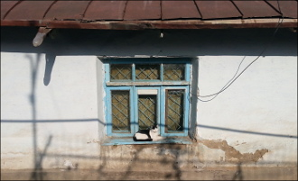 Право собственности забыто и попрано. Может ли президент Узбекистана решить проблему сноса жилых домов?
