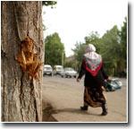 Сайт «www.press-uz.info» опровергает Генеральную прокуратуру Узбекистана: женщин, погибших во время андижанских событий, было гораздо больше
